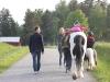 Hästpromenad