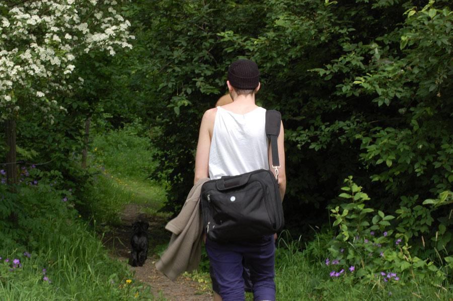 Promenad genom skog och mark